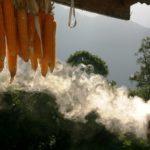 Incense. Weihräuchern