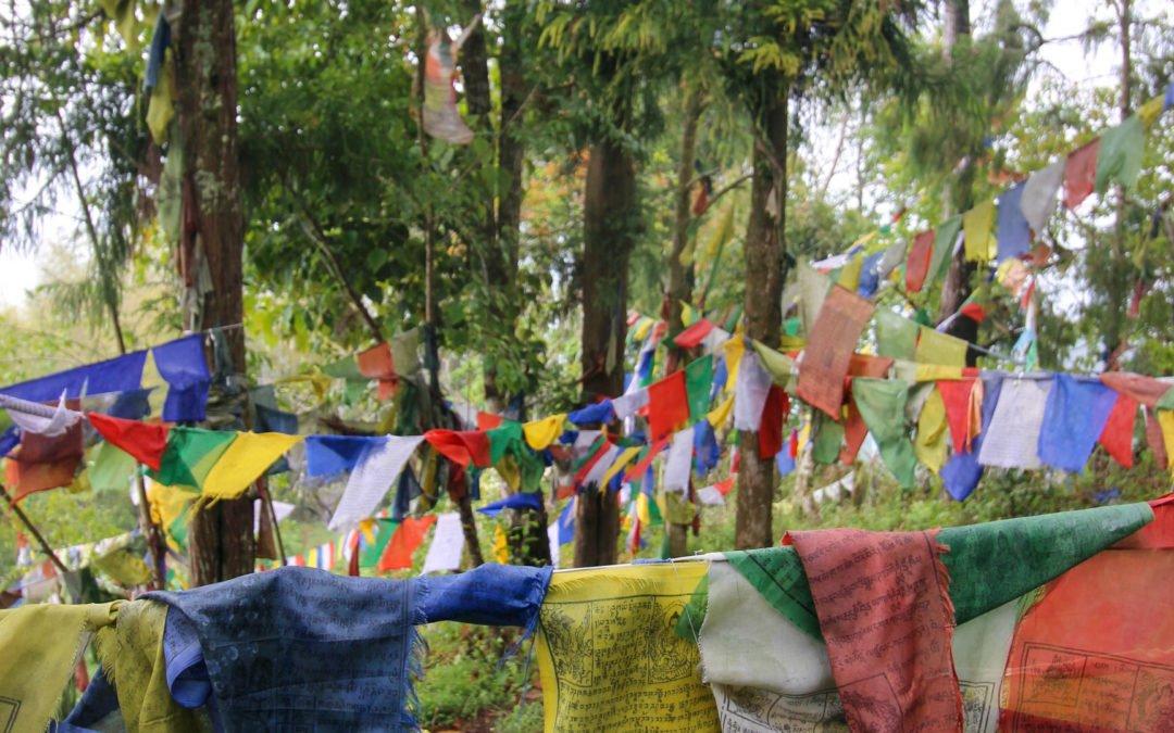 Gebetsfahnen – tibetische Windpferde in Indien