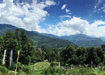 Bamboo-Retreat-Panoramic-View